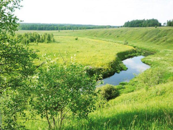 Бежин луг поля и река летом