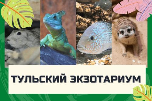 Тульский экзотариум в центральном парке им. П. П. Белоусова